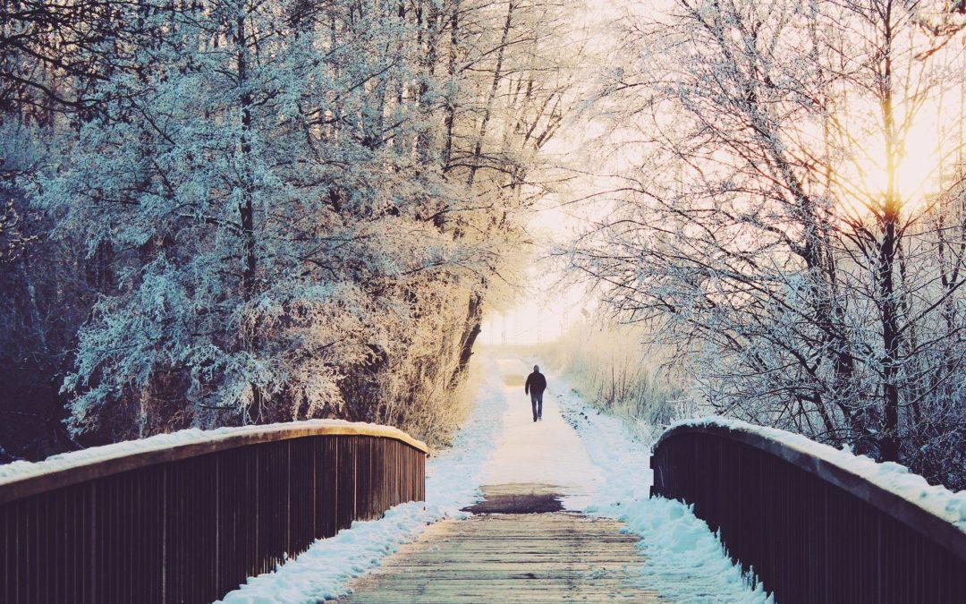 Winterzeit – achten Sie auf ihre Vitamin D Versorgung!
