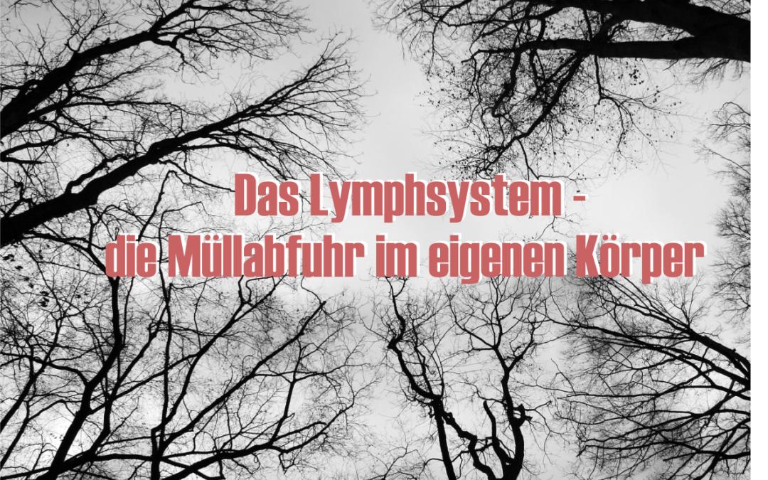 Wie wichtig ist die Reinigung unseres Lymphsystems?